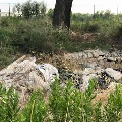 Azzollini lascia Giovinazzo: «Costretti a lavorare tra rovi e discariche»