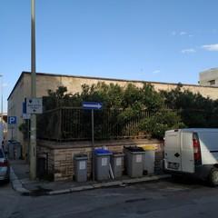 L'ex scuola Giuseppina Pansini, il regno di topi e degrado