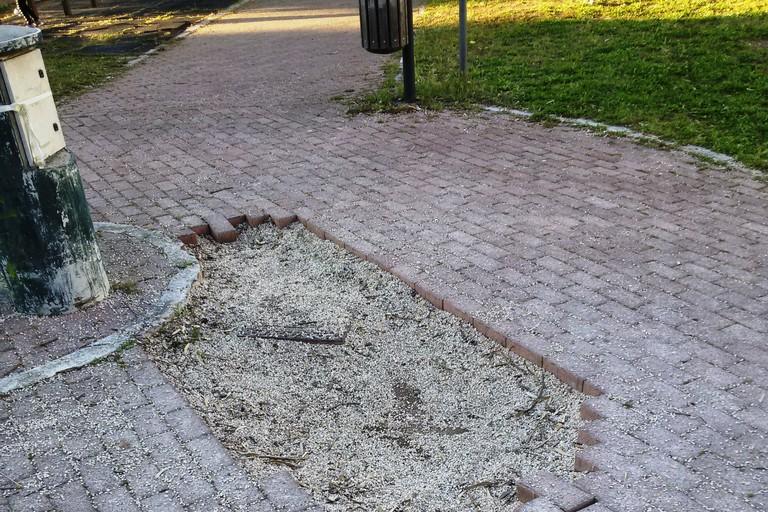 La grande buca al centro del viale