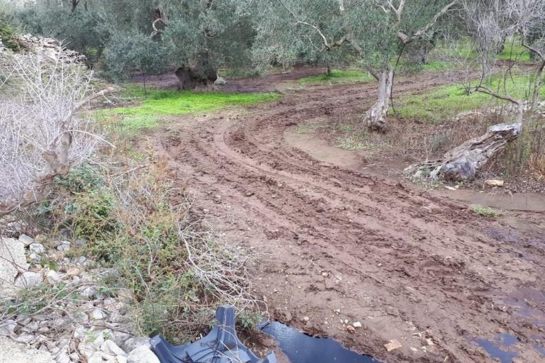 Il solco lasciato da mezzi agricoli. <span>Foto PVA </span>