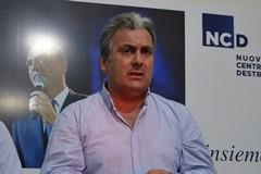 Allarme cinghiali, Stea: «La Giunta regionale ignora i pericoli»