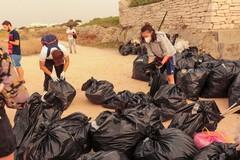 """""""Puliamo il mondo"""": raccolti 591 kg di rifiuti sul litorale sud di Giovinazzo"""