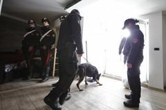 Hashish nascosta nel garage: pusher stanato dai Carabinieri
