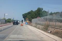 Lavori sulla ex 16 Adriatica: traffico rallentato