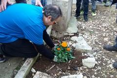 Senza vergogna: rubato il fiore piantato in piazza Stallone