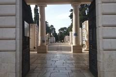 Ponte di Ognissanti: gli orari d'apertura del cimitero comunale