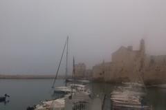 Nebbia su Giovinazzo: LA FOTO suggestiva del porticciolo
