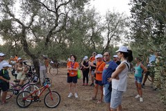 Quasi cento partecipanti per la Cicloturistica della Touring Juvenatium