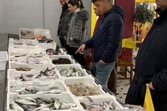 50 milioni per i lavoratori del settore pesca