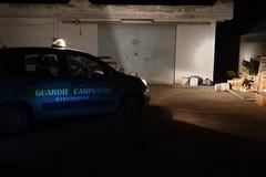 Tentato furto in un'azienda agricola: ladri in fuga
