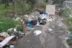 4 multe per abbandono di rifiuti nella lama Castello. In azione la Polizia Locale