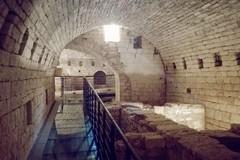 """Una giornata """"Tra vicoli e palazzi dell'antica Iuvenacium"""""""