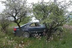 Auto rubate a Giovinazzo e ritrovate ad Andria