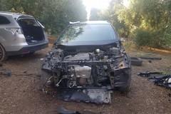 Bari e Bat capitali del furto d'auto