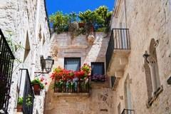 """""""Giovinazzo Borgo in Fiore 2019"""": come far bello il centro storico con poco"""