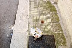 Escrementi umani in via Felice Leoni: i residenti si ribellano