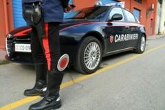 Banda di ladri intercettata, scatta l'inseguimento: furto sventato