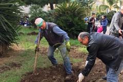 """La Festa dell'Albero alla """"San Giovanni Bosco"""": LE FOTO e tutte le emozioni"""