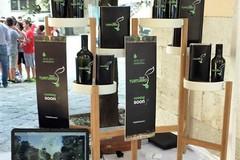 L'azienda olivicola dei fratelli Turturro al Festival Italiano di Aerografia