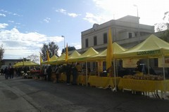 In Villa Comunale c'è il mercato di Campagna Amica