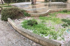 Ultim'ora: grandine e nevischio su Giovinazzo