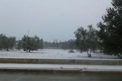Neve, il Sindaco rassicura: «Al momento nessuna criticità particolare»