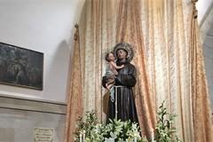 Sant'Antonio di Padova, oggi la festa liturgica. Poi domenica la processione