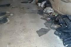 Rifiuti in località Pietre Rosse: «Situazione insostenibile, sono parcheggiati da mesi»