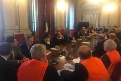 Olivicoltura, le proposte dei gilet arancioni e le rassicurazioni del Ministero