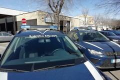Rifiuti ed eccesso di velocità: controlli serrati della Polizia Locale di Giovinazzo