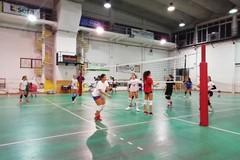 Volley Ball, riparte la D. L'obiettivo del club: «Disputare un buon campionato»