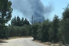 Incendio in un vivaio di Terlizzi. La nube di fumo visibile anche da Giovinazzo