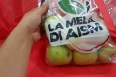 AISM, a Giovinazzo venduti 75 sacchetti per la ricerca