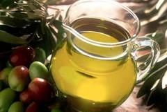Agricoltura, M5S: «Necessario attuare il Piano olivicolo»