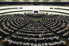 Gli eletti al Parlamento Europeo nella Circoscrizione Sud Italia
