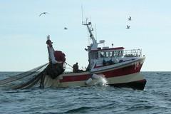 Ristoranti chiusi, battuta d'arresto per la pesca pugliese