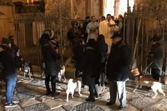 La benedizione di Sant'Antonio Abate sugli animali