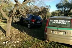 Ancora auto rubate recuperate nelle campagne di Giovinazzo