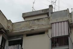 Case popolari, la posizione dell'Amministrazione comunale
