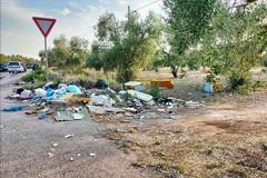 Rifiuti abbandonati su provinciali e statali, asse Depalma-Vitto per tavolo urgente