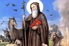 Sant'Antonio Abate, il programma del sabato
