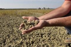 Siccità in Puglia, Coldiretti denuncia: «In tre giorni persi 1,3 milioni di metri cubi d'acqua»