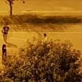 Giocano a basket dopo le 22: il Sindaco chiede ai ragazzi senso civico