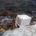 Vergogna a Levante: un frigorifero in mare