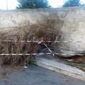 Area interdetta in via Durazzo: c'è un albero spezzato da giorni