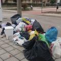 Una domenica tra i rifiuti (FOTO)
