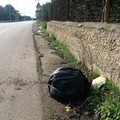 Aumenta la spazzatura su complanari e strade di campagna (FOTO)