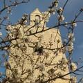 Meteo Pasqua e Pasquetta