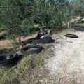 L'agro si riempie di copertoni abbandonati (FOTO)