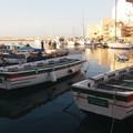 In Cala Porto c'è la Festa del Mare con la Sagra del pesce fritto